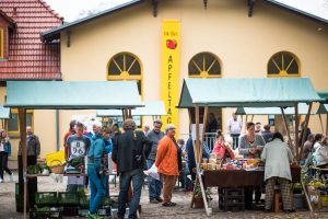 16. Tag des Apfels im Naturpark Stechlin-Ruppiner Land @ Regionalwerkstatt und NaturParkHaus Stechlin