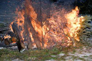Weihnachtsbaumverbrennen @ Alte Feuerwehr Menz